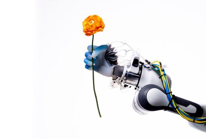 Com pulso firme, porém delicado, uma mão robótica do Laboratório de Robótica e Biologia da Universidade ...