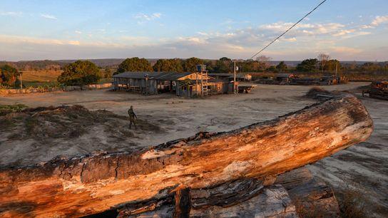 Um agente do Ibama faz vigília em uma serraria nas proximidades de Boa Vista do Pacarana, ...