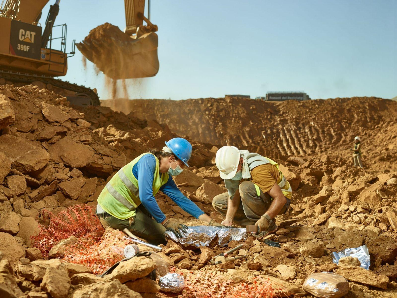 Os inestimáveis fósseis de primatas encontrados em um depósito de lixo