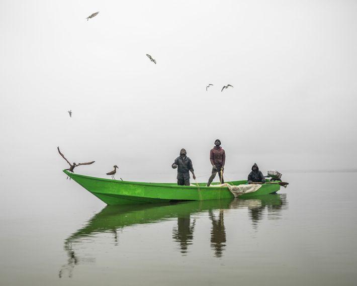 Pescadores puxam as redes ao amanhecer no lago Naivasha, enquanto gaivotas e pássaros-martelo voam no alto, ...