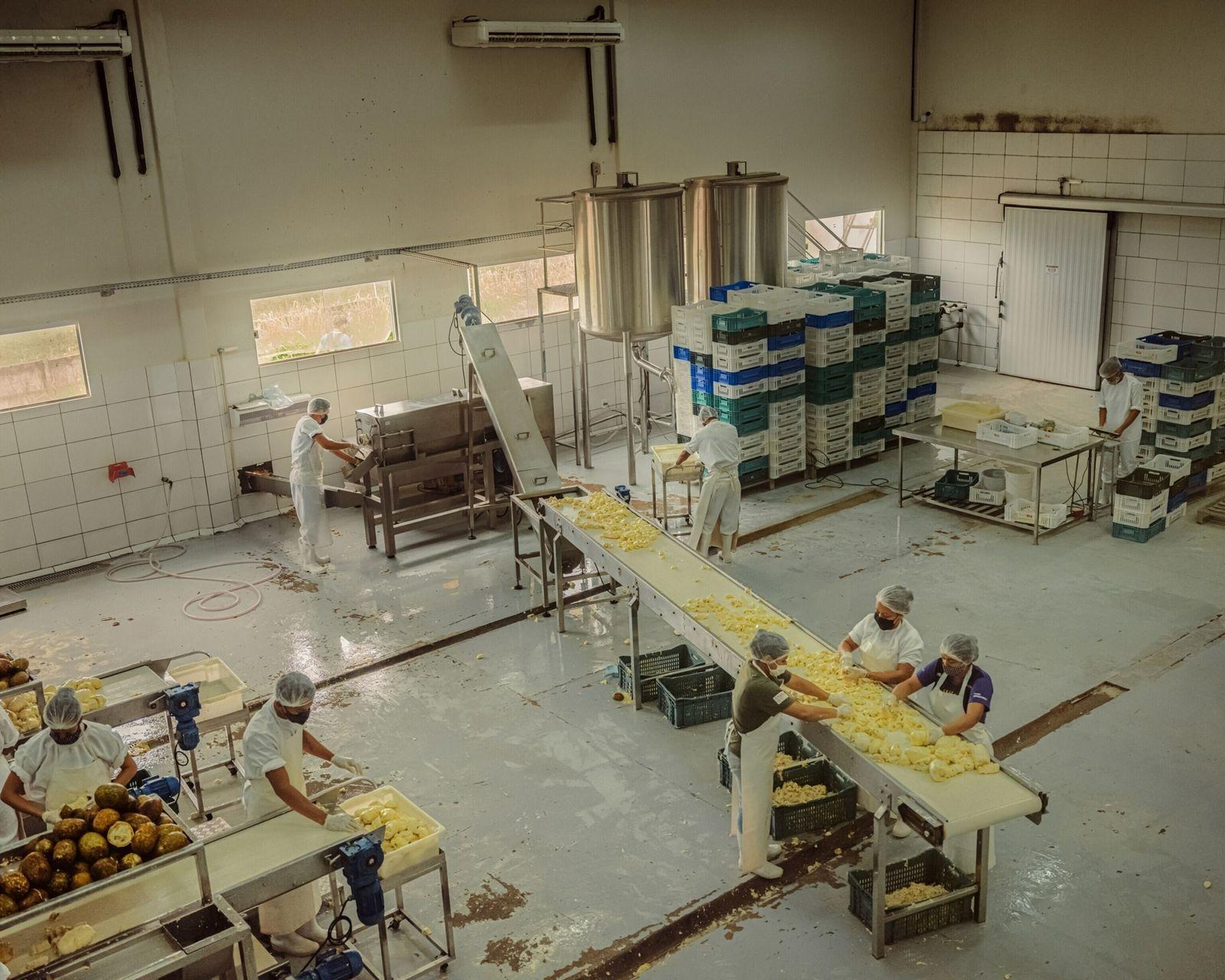 cupuaçu-factory