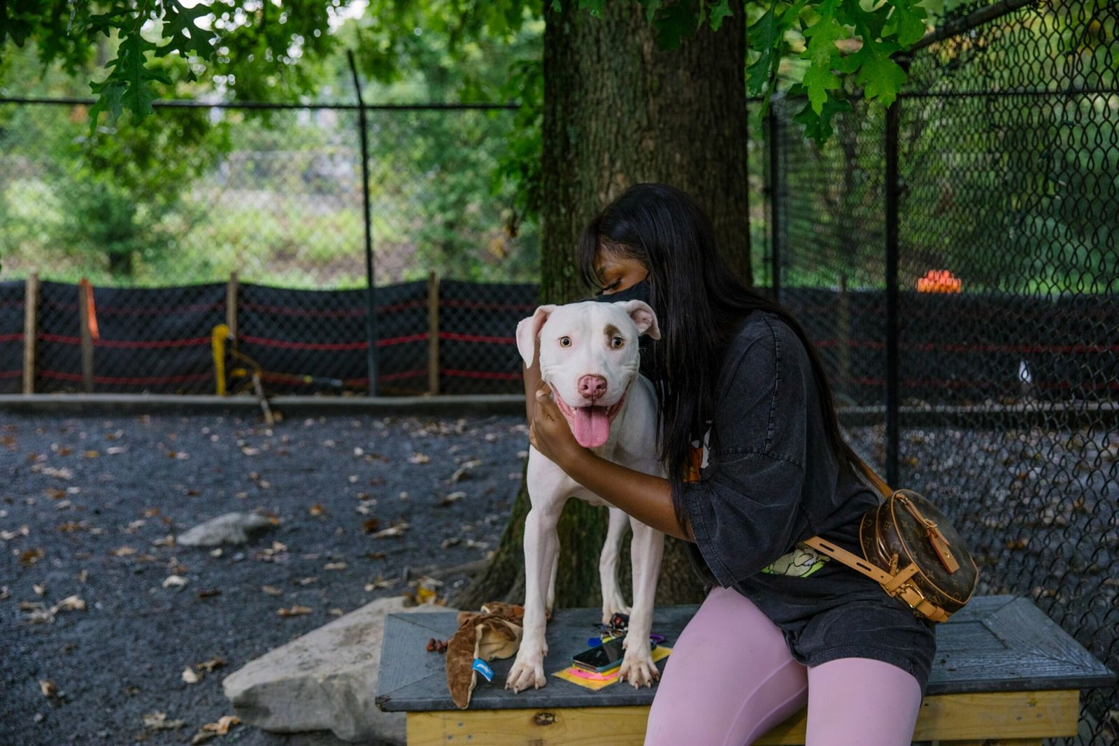 15-animal-shelters