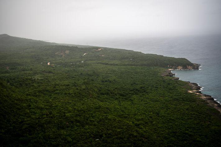 A parte ocidental da península meridional do Haiti é montanhosa e é ocupada principalmente por plantações ...