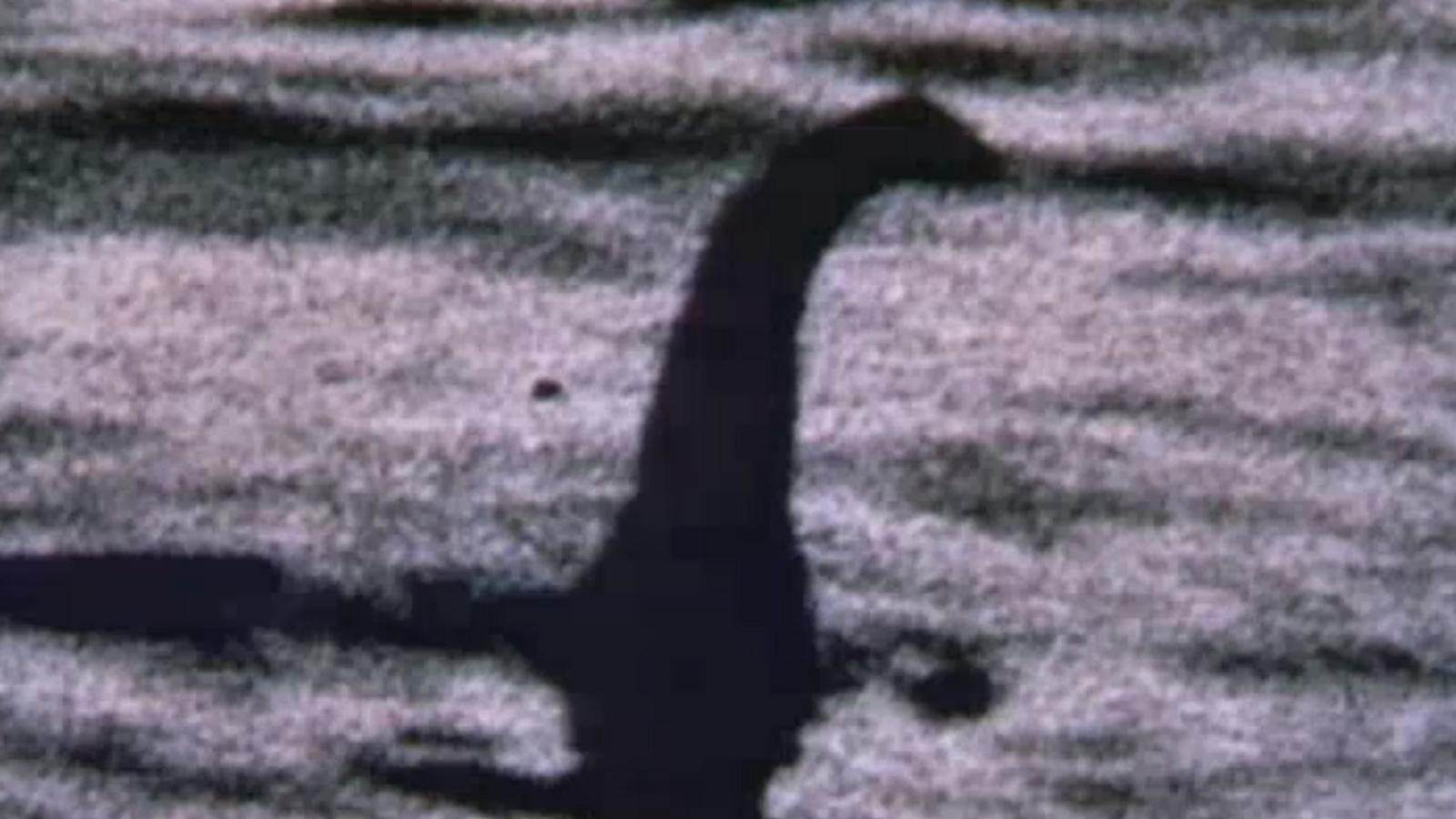 A pesquisa irá resultar em um perfil genético de todo o ecossistema do Lago Ness, não ...