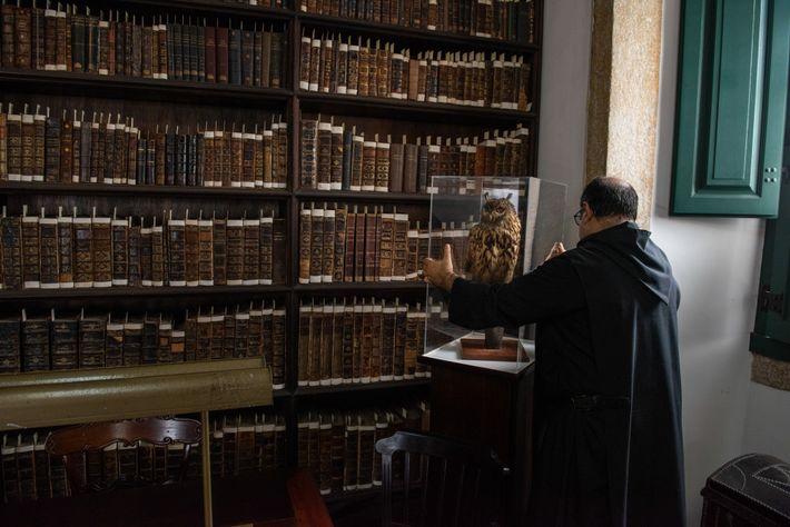 biblioteca mosteiro de sao bento