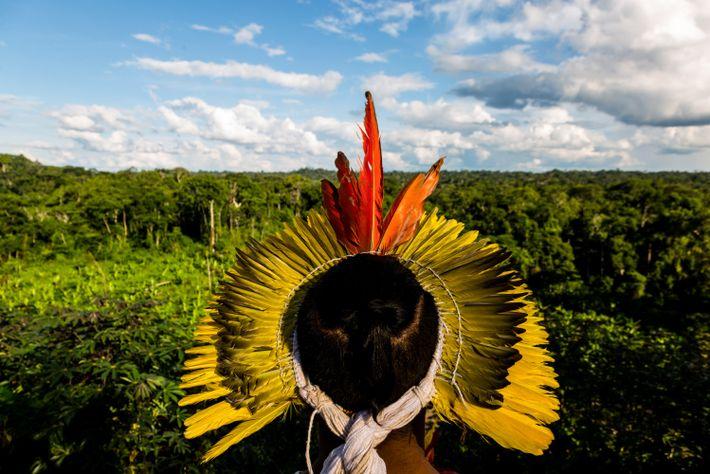 Matsini Vēna, filho de Waxy, contempla a floresta amazônica no Acre. Os indígenas têm sido especialmente ...