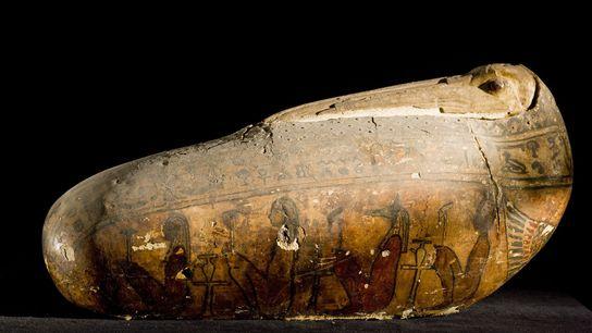 A cobertura incomum de um íbis votivo mumificado — casca de linho e gesso — reproduz ...