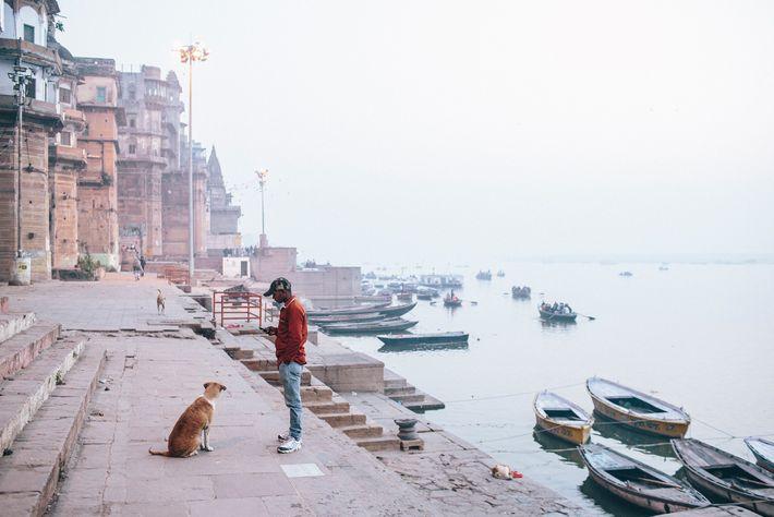 Um cão de rua senta-se próximo de um homem em Varanasi, cidade em Uttar Pradesh. Um ...