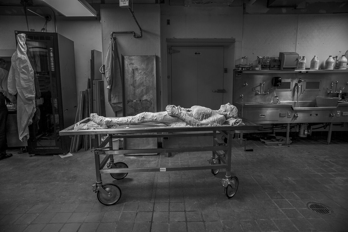 2015  Susan Potter se tornou um cadáver imortal no dia de sua morte em fevereiro de 2015. ...
