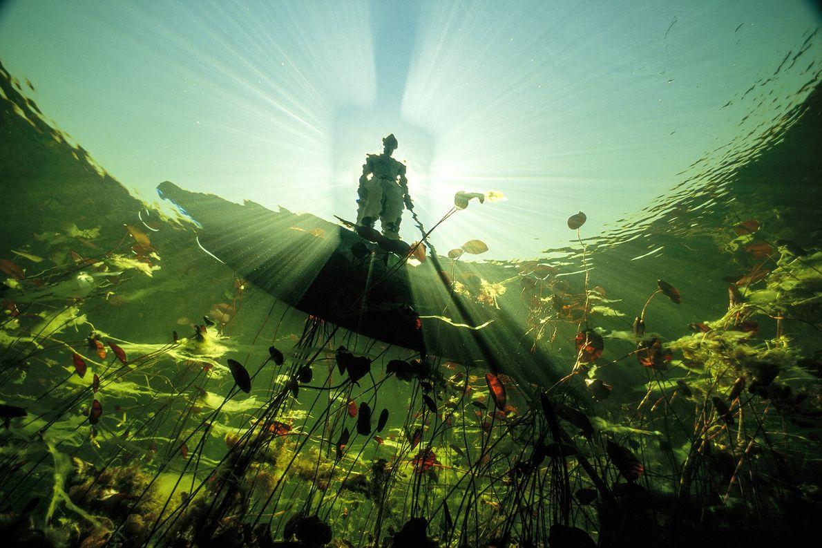 2004  Bosquímano observa as águas de cor esmeralda do rio Okavango, em Botswana. Em uma região tomada ...