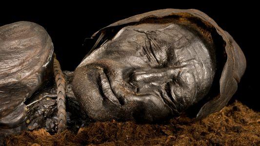 Última refeição de múmia sacrificial do pântano surpreende pesquisadores