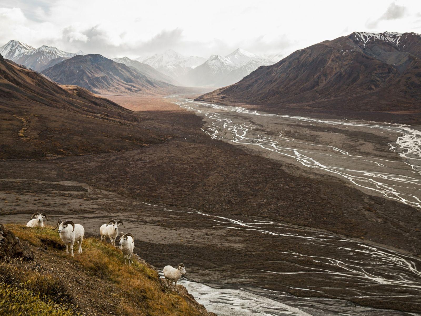 alaska-thawing-national-park