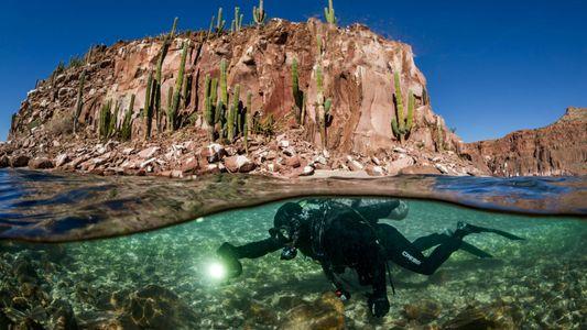 Terra já perdeu e ganhou muitos oceanos. Você sabe onde pode surgir o próximo?