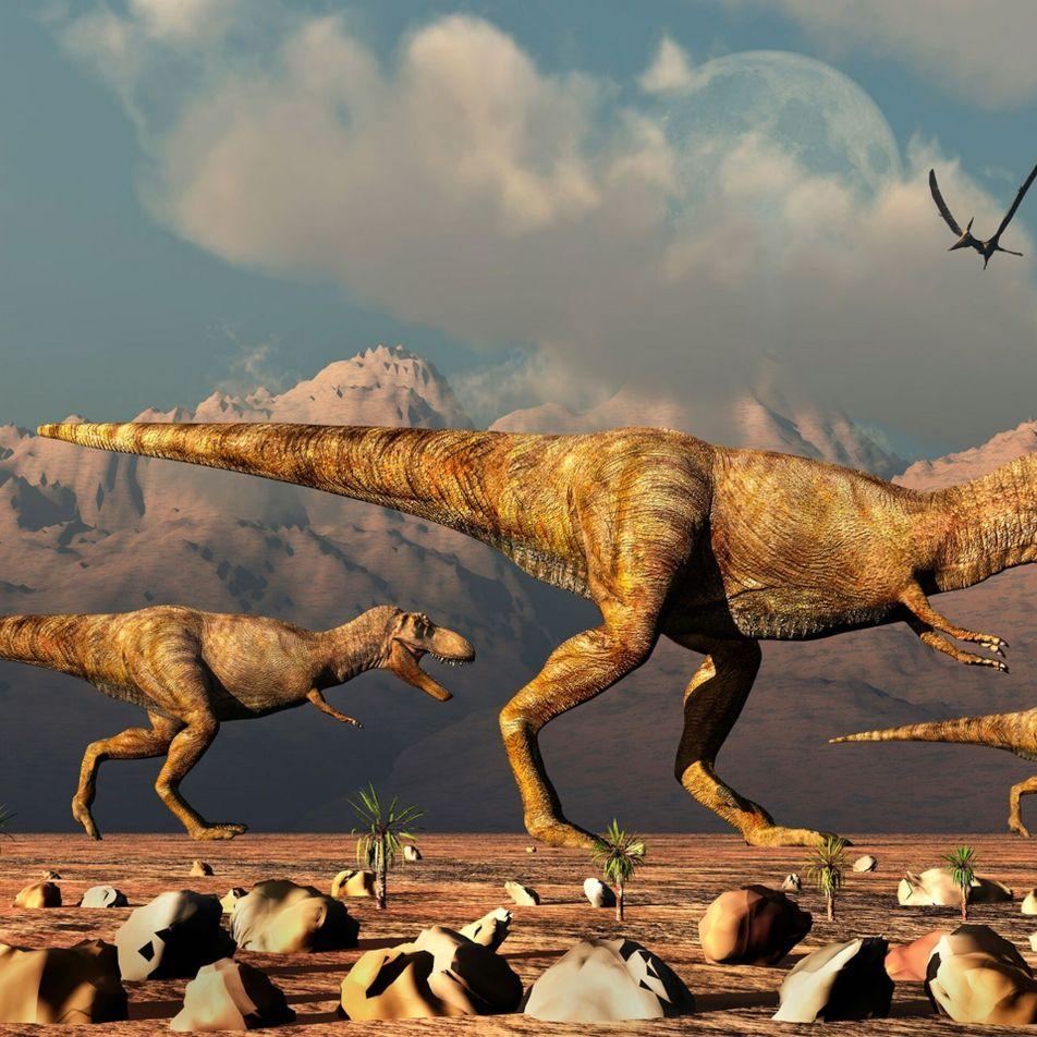 Bilhões de tiranossauros possivelmente andaram pela Terra, segundo paleontólogos