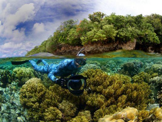 Protetores da vida e de lugares selvagens recebem prêmios da National Geographic