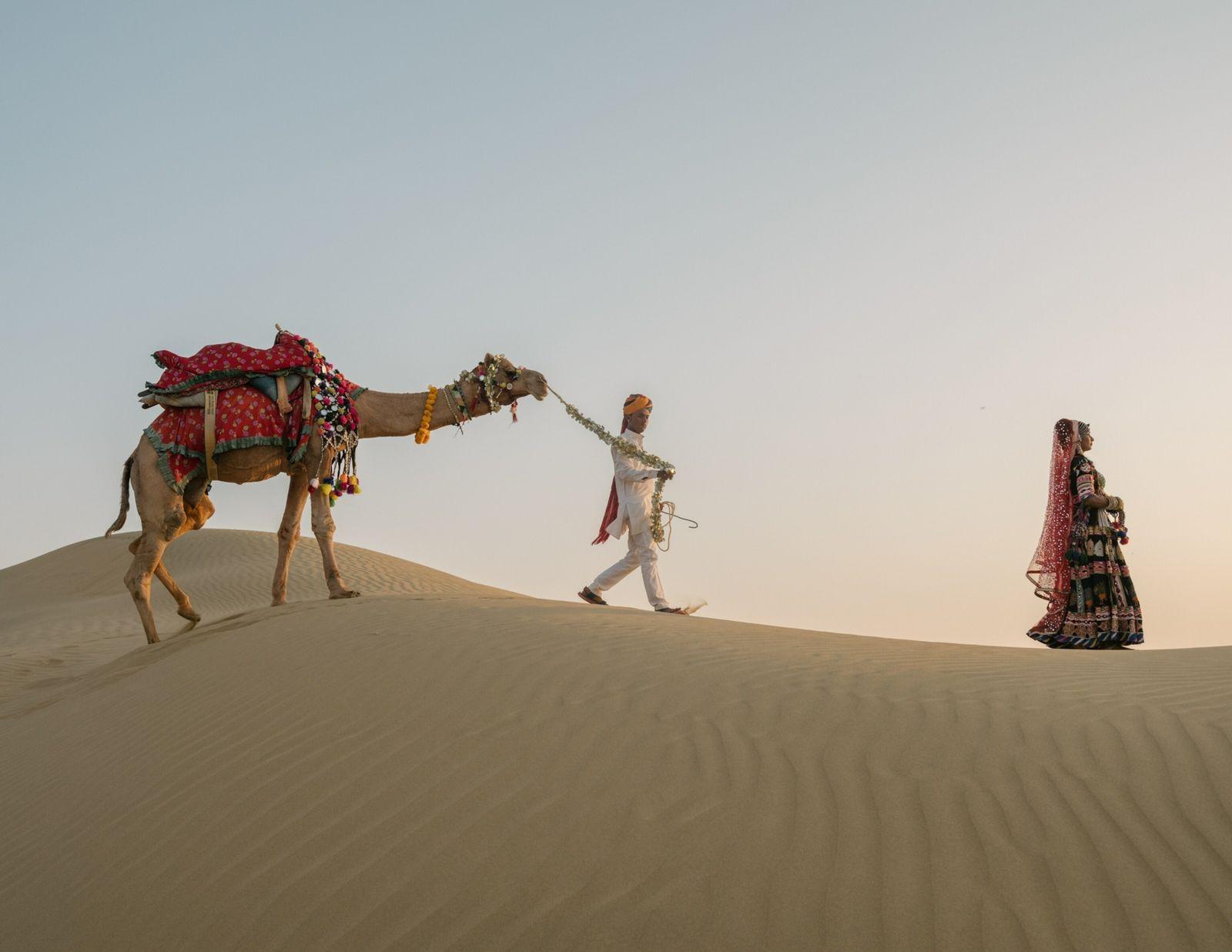 01-sunset-camel-ride