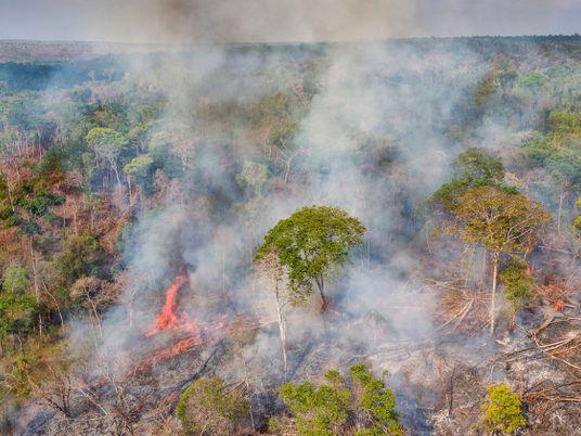 Emissões de gases estufa aumentam no Brasil – atividades rurais lideram