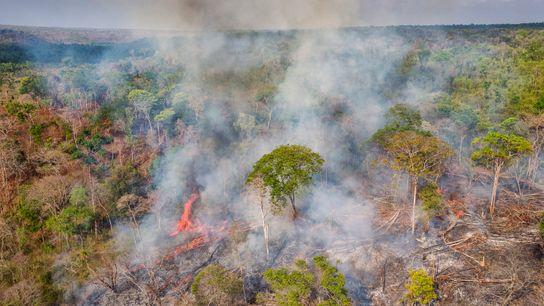 Floresta queima no estado do Maranhão. Diferente de países desenvolvidos, cujas emissões provêm principalmente da queima ...