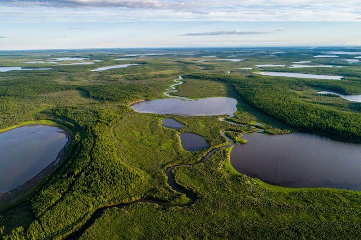 Foto aérea do parque Pleistoceno, com lagos e vegetação, na Rússia