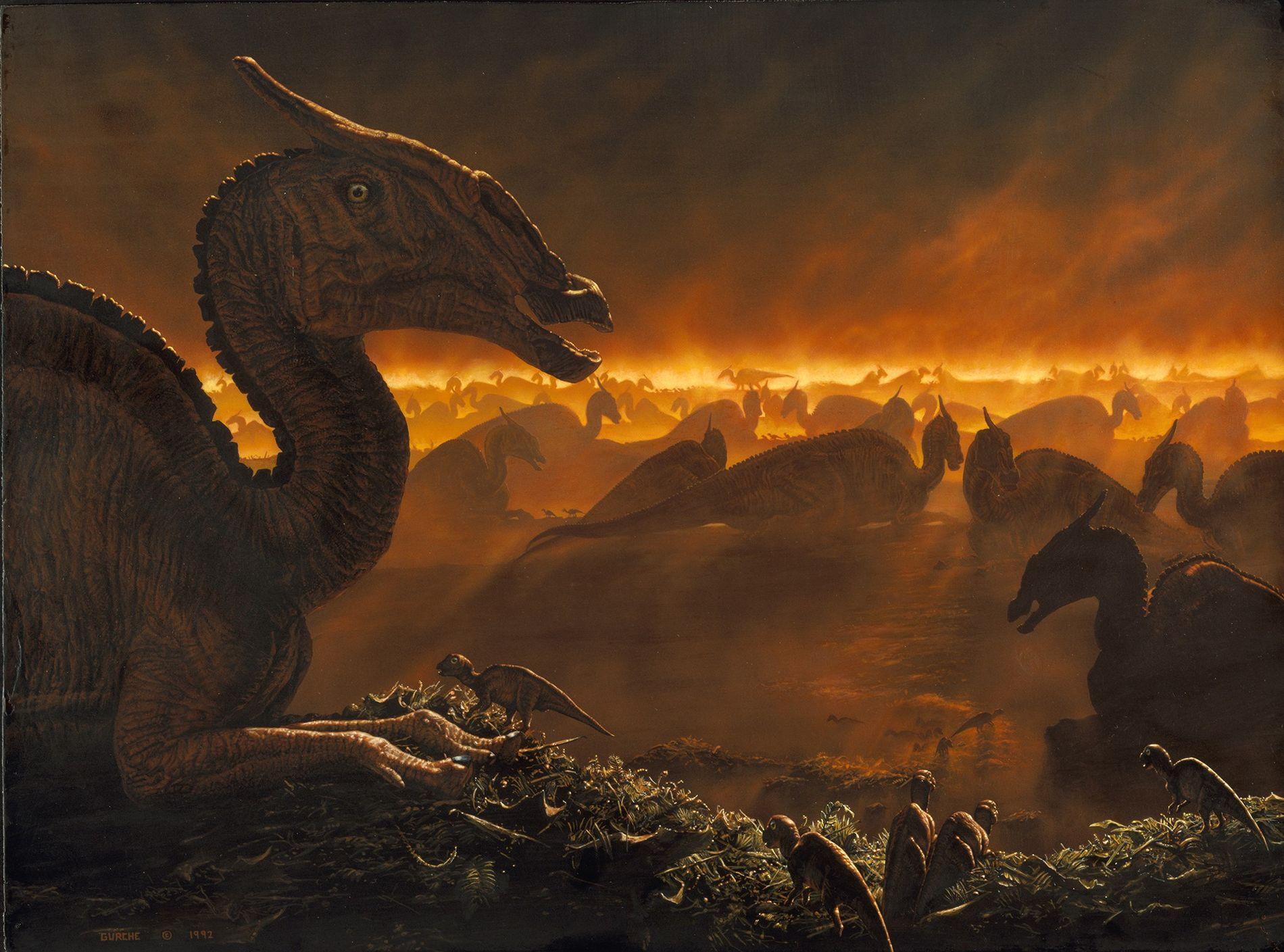 Saurolophus da Mongólia se reúnem no amanhecer em meio ao nevoeiro, conforme exibido em uma pintura. Dinossauros terrestres morreram há 66 milhões de anos em um cataclismo provavelmente causado pelo impacto de um grande asteroide. Agora, dois estudos ajudam a esclarecer a influência de enormes vulcões em erupção na mesma época.
