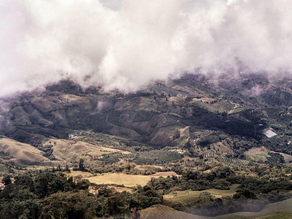 Reduzindo o impacto das mudanças climáticas sobre os agricultores de café