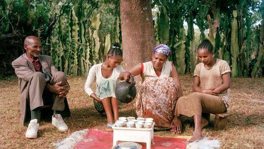 Desfrute do sabor de um café cheio de tradição