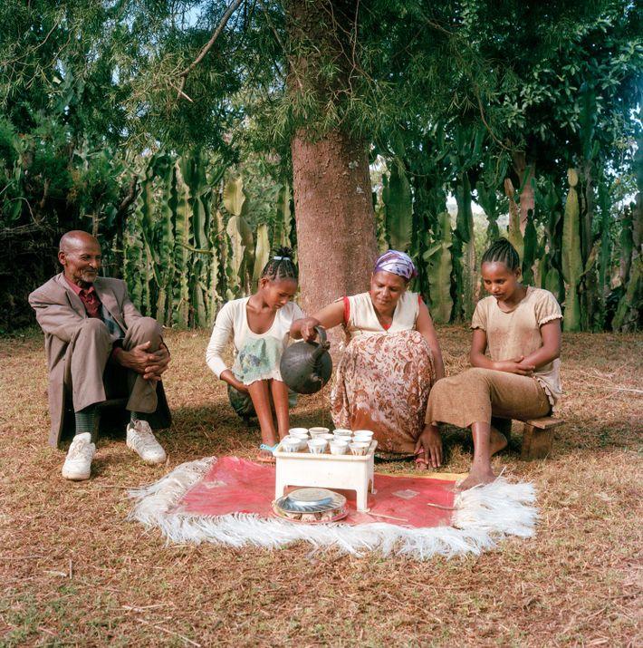 Bekele Erango, Birtugan e seus filhos sentam-se para saborear o café diferenciado que produzem – um ...