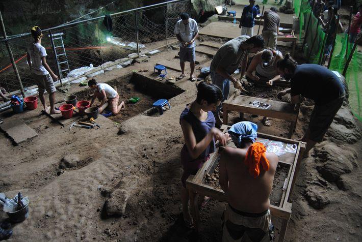 Pesquisadores escavam com cuidado centenas de centímetros de argila espessa nesta imagem da escavação da caverna ...