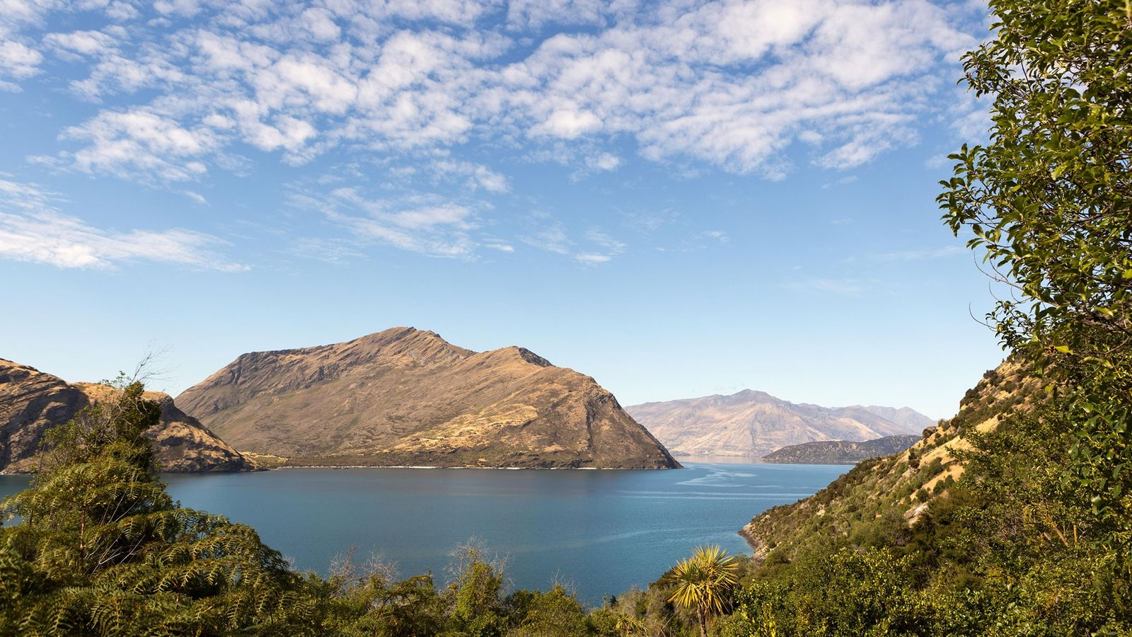 nova-zelandia-ilha-mou-waho