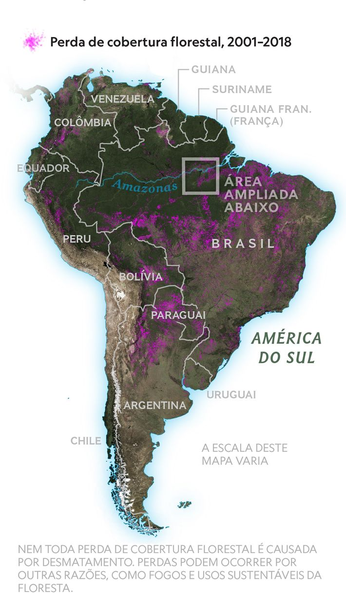 Liderando o desmatamento mundial Dos países que perderam mais floresta desde 2001, quatro estão localizados na América ...