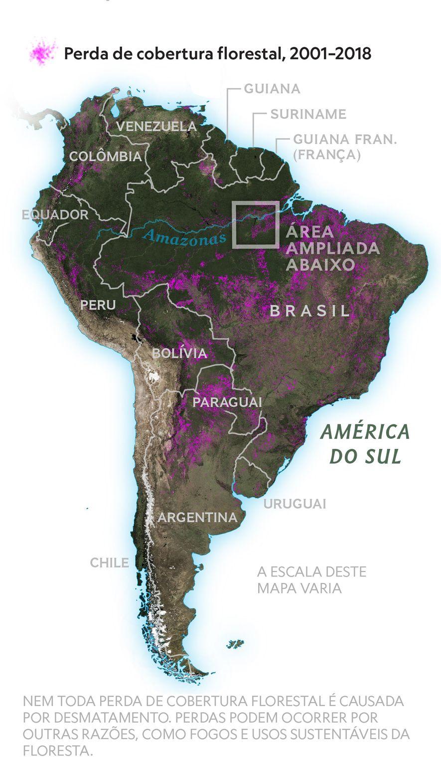 Liderando o desmatamento mundial Dos países que perderam mais floresta desde 2001, quatro estão localizados na América do Sul. O World Resources Institute, que monitora a cobertura florestal em todo o mundo, relata aumento do desmatamento no Brasil, Indonésia, Colômbia, Peru e Bolívia.
