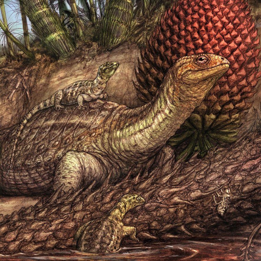 Nesta ilustração, membros da espécie Pappochelys rosinae, uma espécie de tartaruga sem casco, exploram um lago ...