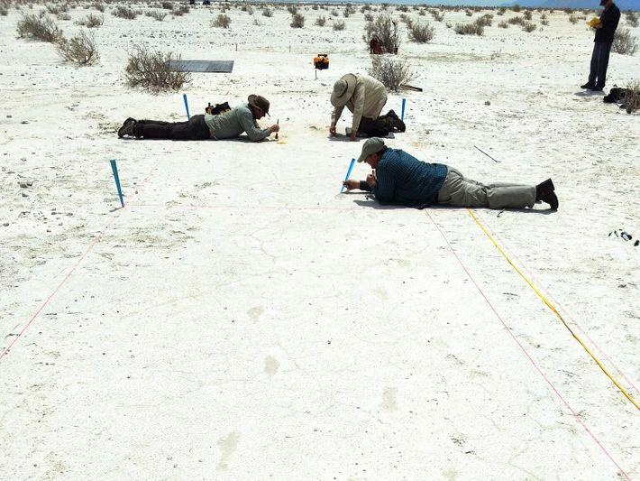 Cientistas escavam cuidadosamente as pegadas antigas deixadas na areia antes de registrá-las em três dimensões. As ...