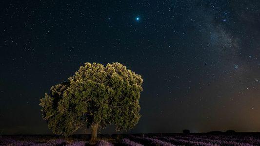 Em raro espetáculo, Júpiter e Saturno irão praticamente se 'esbarrar' neste mês