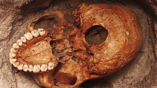 Ossos de mil anos são das vítimas mais antigas de um tsunami na África Oriental