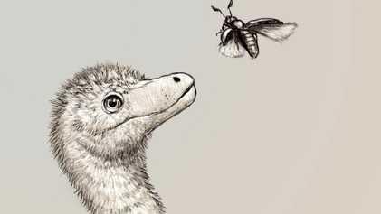 Revelados os primeiros fósseis de embriões de tiranossauros