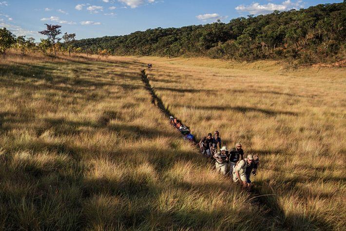 O projeto Okavango Wilderness, da National Geographic, visa o levantamento e a proteção das cabeceiras dos ...