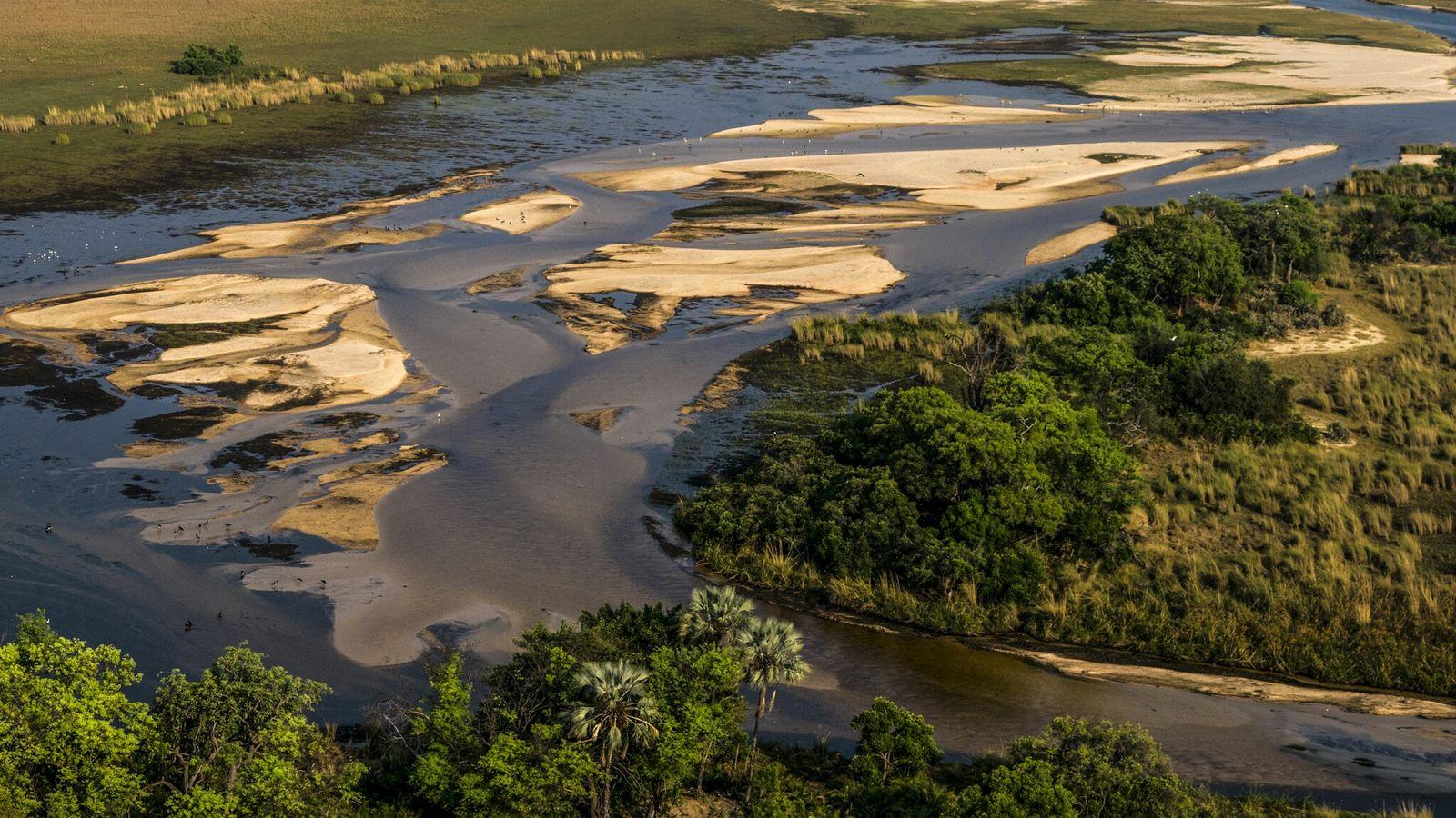 O Delta do Okavango, um pântano que proporciona habitat essencial à vida selvagem, fica a cerca ...