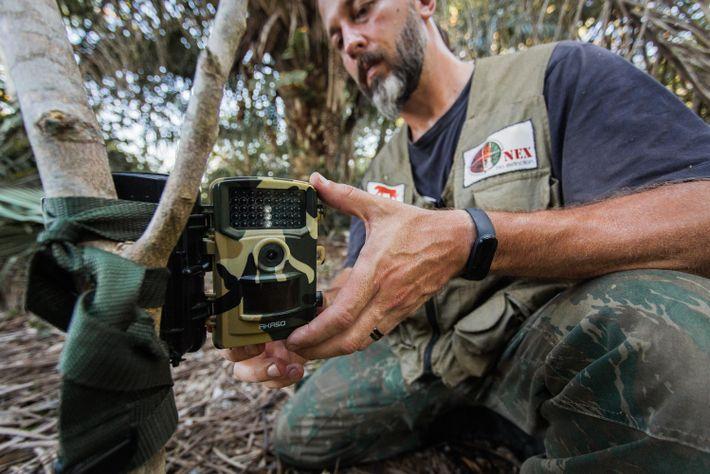 Armadilhas fotográficas para monitorar o movimento de animais na área também são instaladas junto às armadilhas ...