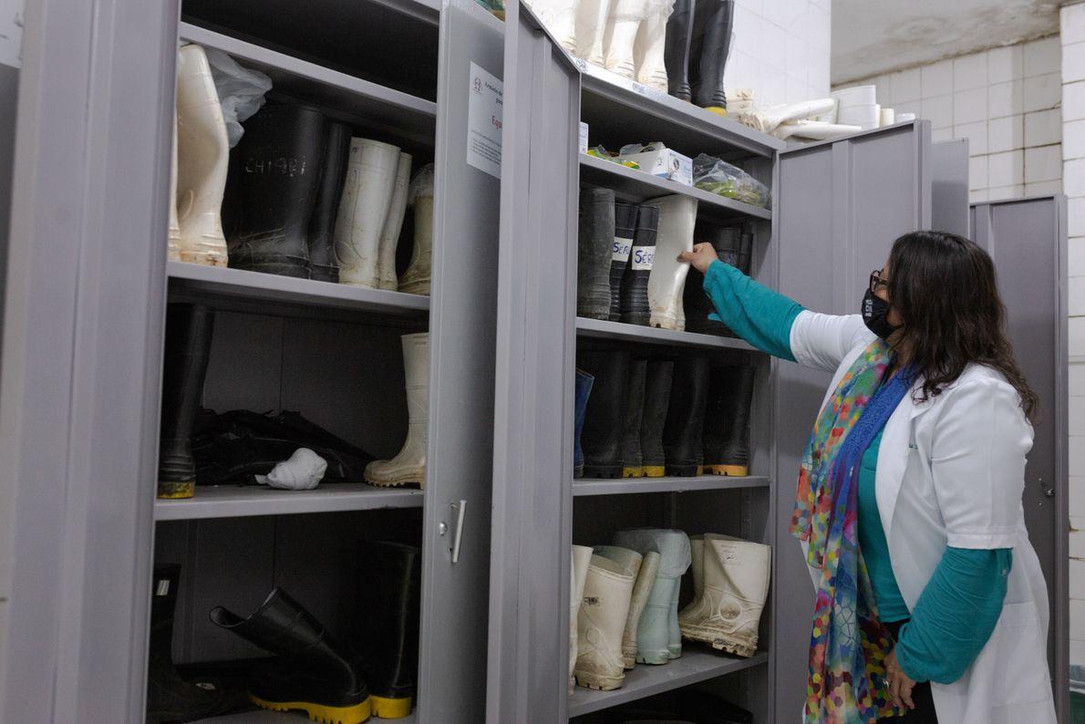 A médica legista Cláudia Sueli Rocha mostra os armários do IML de Belo Horizonte onde estão guardadas as ...