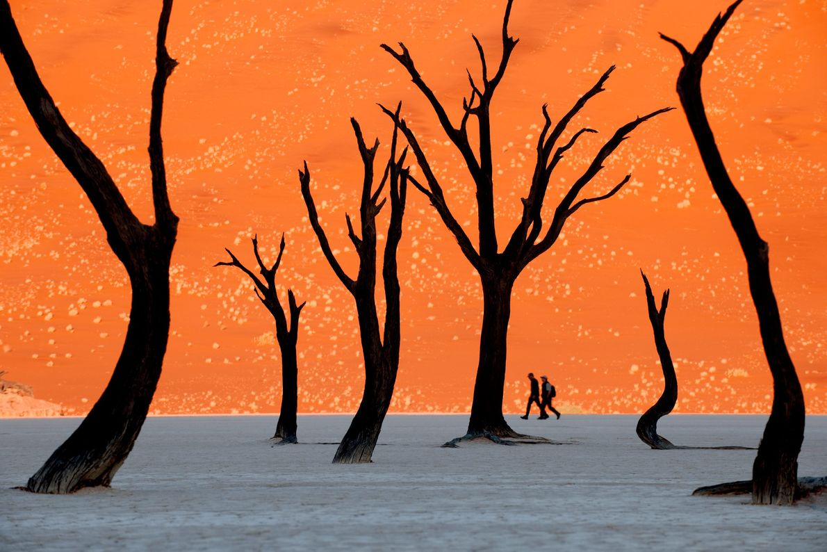 laranja-deserto-namibia