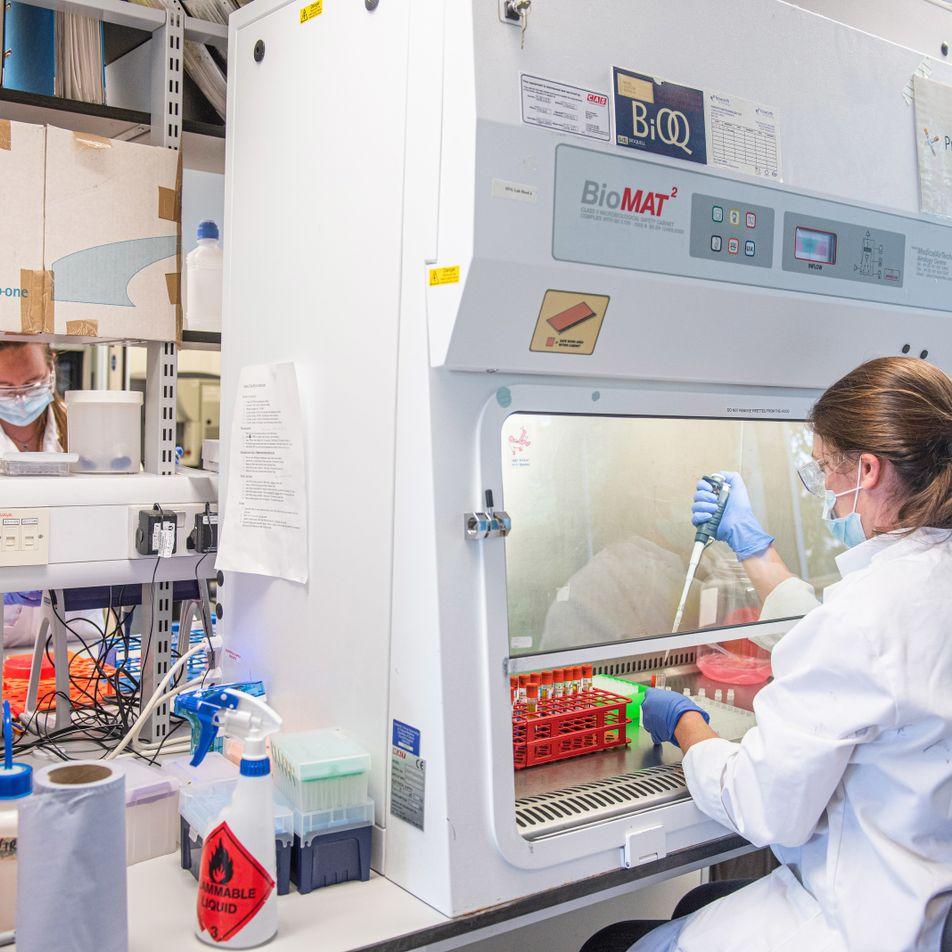 Covid-19: Brasil participa de teste final da vacina desenvolvida pela Universidade de Oxford
