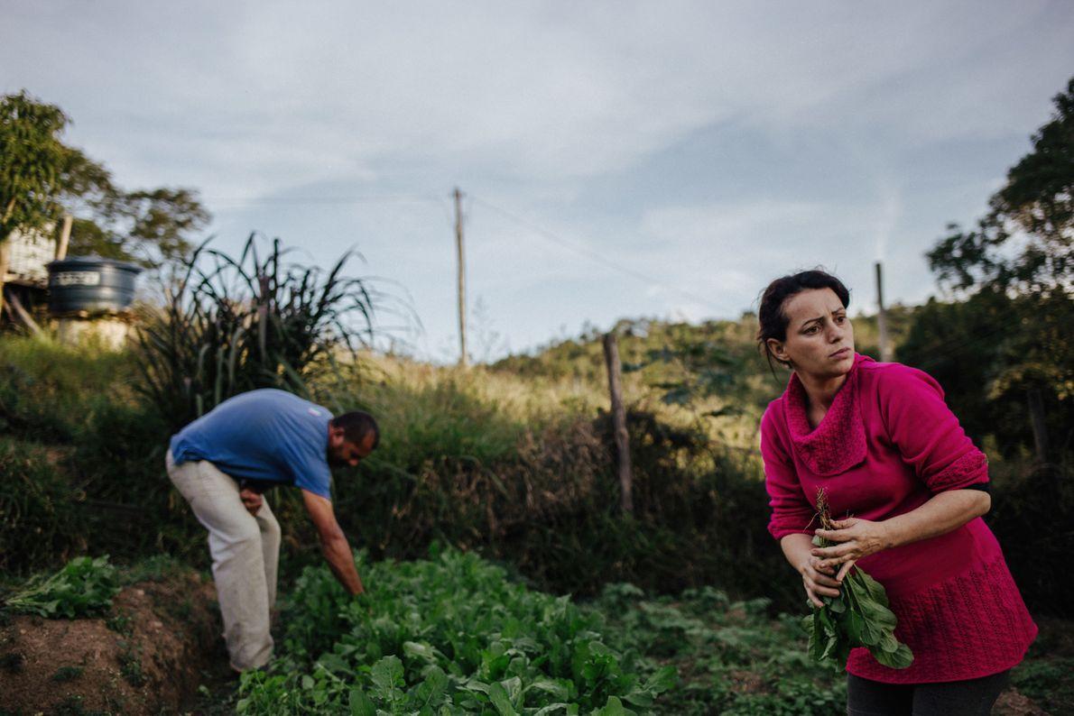 Luana dos Anjos Mori e seu marido, Givanildo Vieira de Lima, produzem hortaliças, frutas e verduras ...