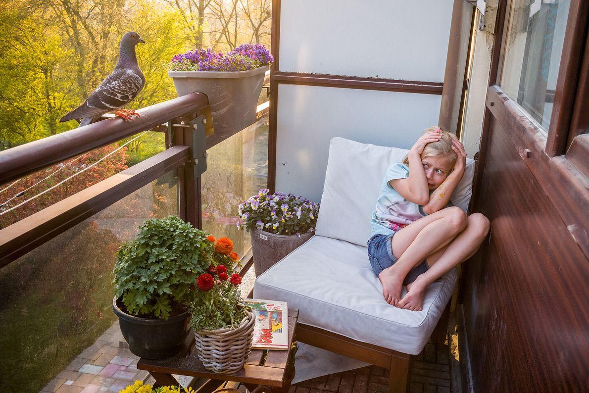 Merel Doest se encolhe após Dollie, um pombo, pousar em sua varanda nos Países Baixos. Jasper, ...