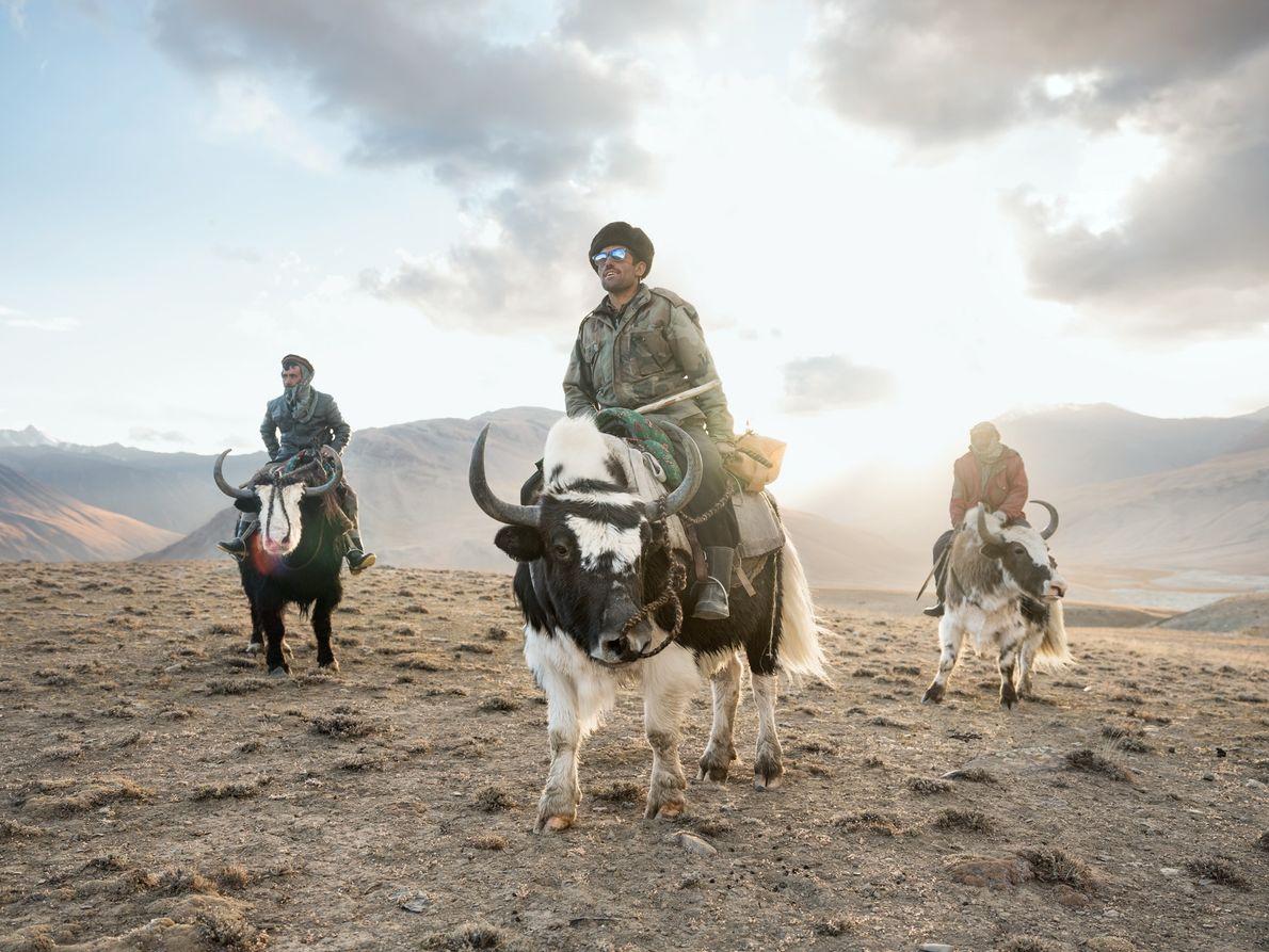 Na região de Wakhan, Sidol (esquerda), Jumagul (centro) e Assan Khan (direita) retornam a seus iaques ...
