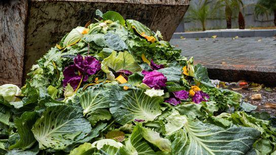 Folhas com aparência fora do padrão são descartadas em feira de rua em São Paulo.