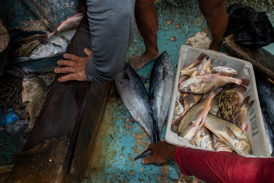 pescadores-copacabana-z-13