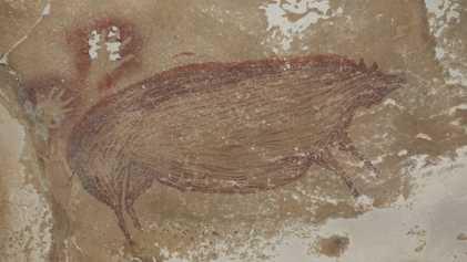 Porco selvagem de 45 mil anos é a arte rupestre figurativa mais antiga do mundo