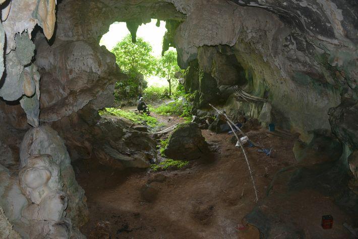 Os cientistas descobriram a obra de arte na parede posterior da caverna, posicionada bem acima do ...