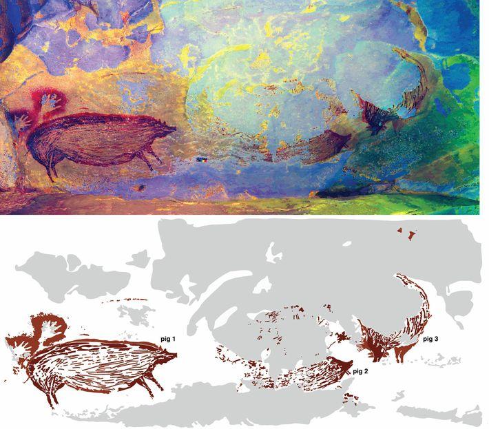 A pintura rupestre pode representar uma cena com vários porcos interagindo, mas a erosão escondeu a maior ...